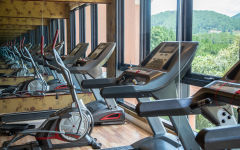 Activities / Fitness – Gym