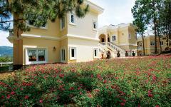 Mimosa Superior suite villa