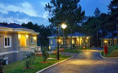 Camellia suite villa alley