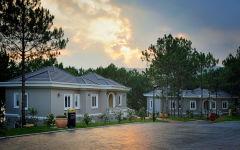 Camellia suite villa alley sunset